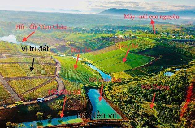 3.5tr/m2 đất nền nghĩ dưỡng tại Tp.Bảo Lộc