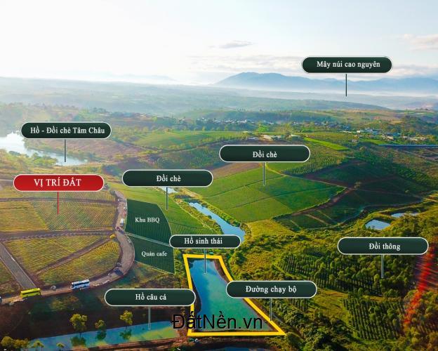 3.5tr/m2 đất nền nghĩ dưỡng tại Lâm Đồng