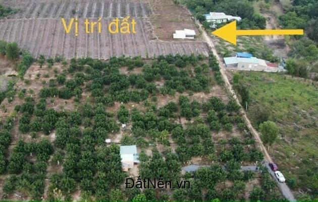Bán đất Định Quán - Đồng Nai.diện tích 12000m2 giá 5.5 Tỷ