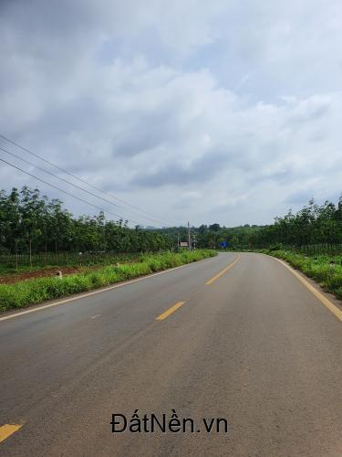 Bán đất thị trấn Dầu Giây, huyện Thống Nhất