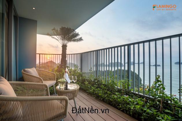 Bán căn hộ dự án Flamingo Cát Bà, view biển 45m2, giá 3,6 tỷ