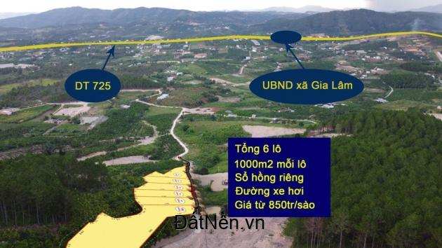 Cần bán lô đất nghỉ dưỡng 1124m2 tại Thôn 3 - xã Gia Lâm - Lâm Hà - Lâm Đồng