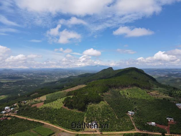 Bán đất nghỉ dưỡng hơn 500m2 tại Thị Trấn Đinh Văn - Lâm Hà - Lâm Đồng giá 639 triệu