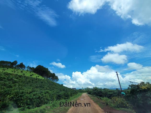 Đất nền Đà Lạt vùng ven hơn 500m2 tại Thôn Gan Thi - Thị Trấn Đinh Văn - Lâm Hà - Lâm Đồng