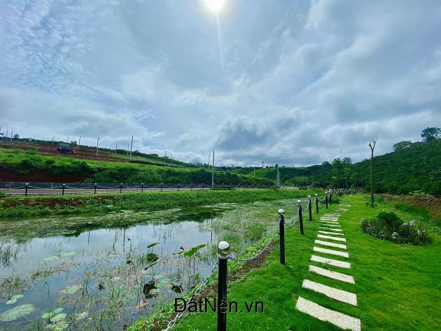 Bán đất Xã Đam Bri, Tp Bảo Lộc 8,3tr/m2 diện tích từ 92-320 m2