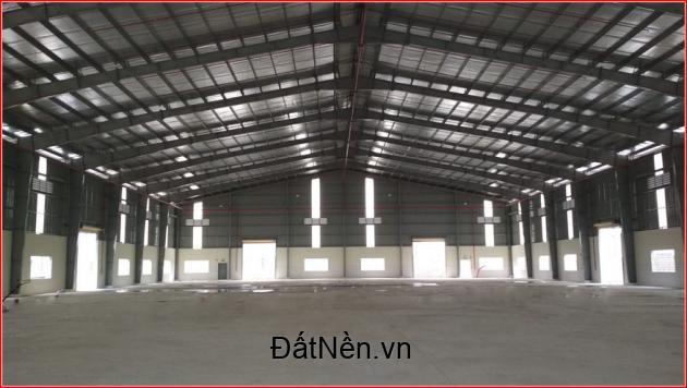Cần cho thuê nhà xưởng 13.000m2 đường Nguyễn Cửu Phú, xã Tân Kiên, Bình Chánh
