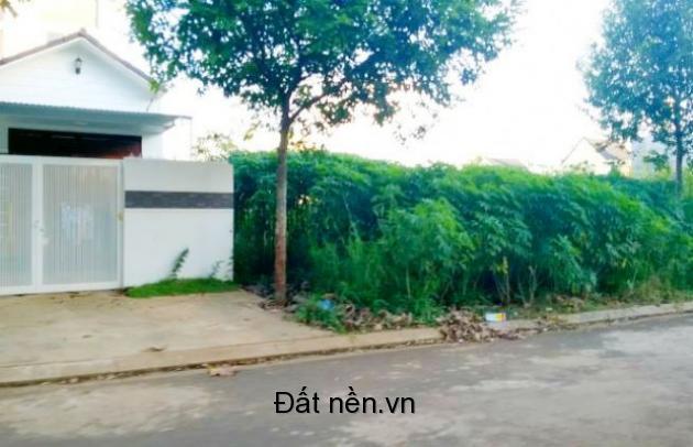 Bán 2 lô biệt thự VIP liền kề 20 x 24m Khu Nguyễn Du mới