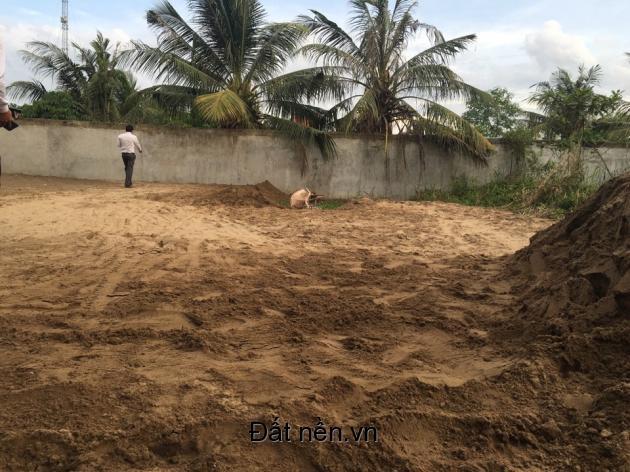 Đất nền an cư hoặc đầu tư, Nguyễn Hữu Thọ nd, 456tr